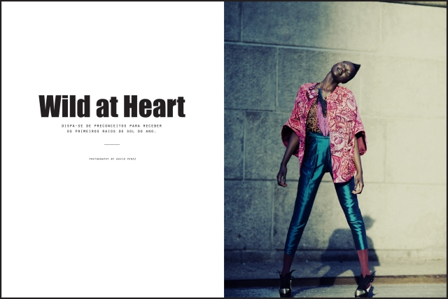 "Styling exercise for editorial workshop ""Wild at Heart"""